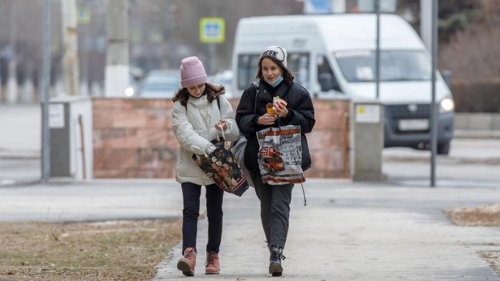 Зима еще покажет, на что способна: в Волгоград вернулись морозы и колючий ветер