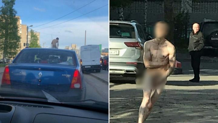Голый архангелогородец забрался на крышу машины, а потом напугал всех своим поведением в ТЦ «Сафари»
