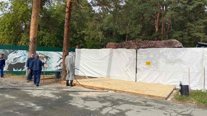 В челябинском зоопарке уничтожат птиц из-за очага гриппа, от которого погибли гуси и лебеди