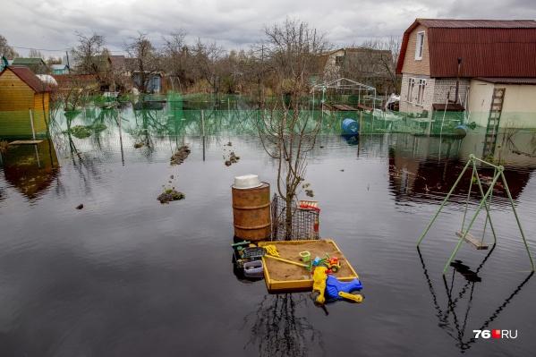 Дачи затопило после холостого сброса воды с Рыбинского водохранилища