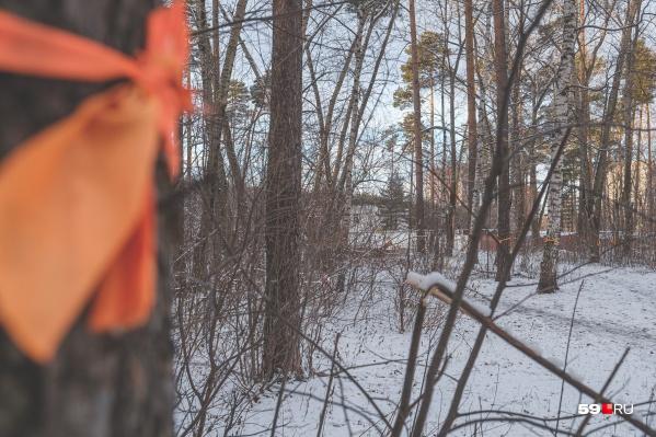 Оранжевыми ленточками активисты обвязали участок, принадлежащий РЖД
