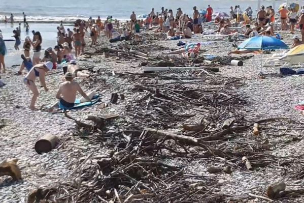 Курортники загорают среди веток и идут купаться в пока еще буйное море