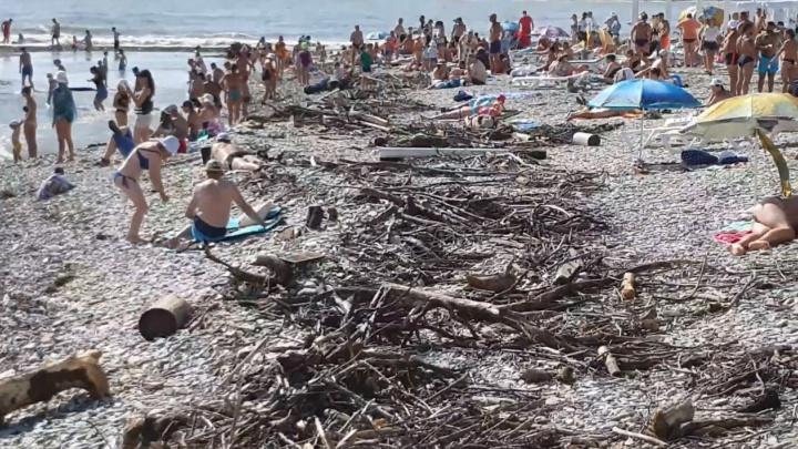 После наводнения в Сочи туристы загорают на пляжах среди гор мусора: посмотрите на это