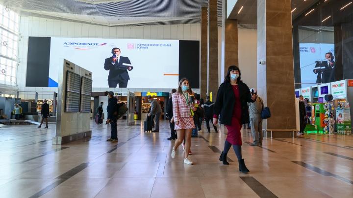 «Всё это дымовая завеса?»: Роспотребнадзор ответил сомневающимся в контроле за приезжающими из-за границы