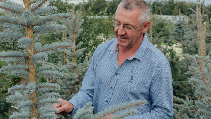 Где растет северный виноград: садовод-энтузиаст создал в Архангельске уникальный плодопитомник
