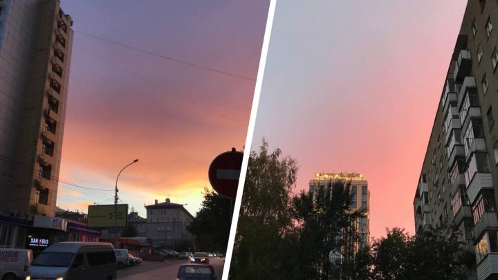 Лето вернулось? Новосибирцев восхитил ярко-розовый рассвет — смотрим фотографии