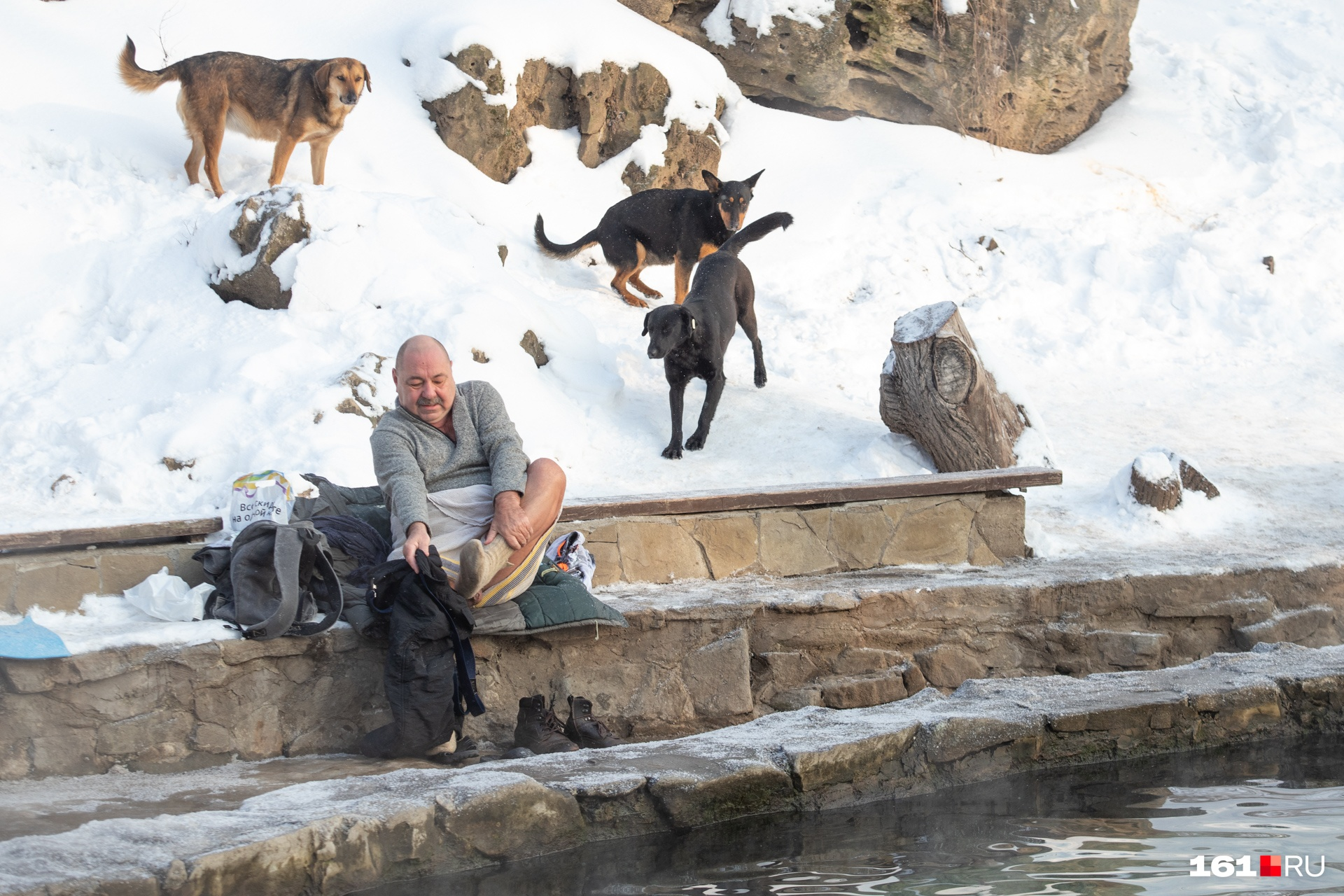 Рядом с родником живет несколько симпатичных собак, которые обрадовались такому количеству гостей