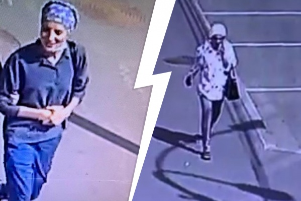 Женщин подозревают в крупной краже