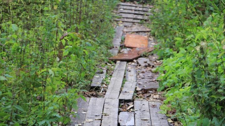 На Варавино-Фактории и в Соломбале обновят деревянные тротуары: рассказываем, где именно