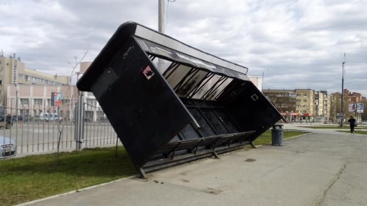 В Перми бушует ветер: он массово срывает с мест остановки и обрушивает деревья на машины и автобусы