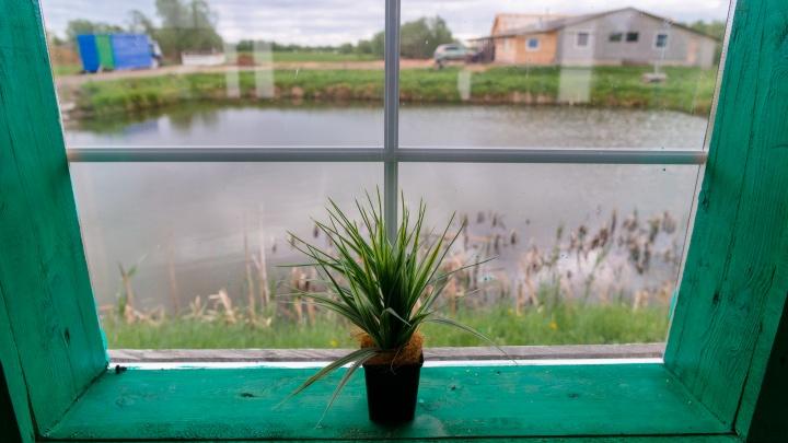 Жители Архангельской области смогут бесплатно получить арктический гектар. Что нужно делать?