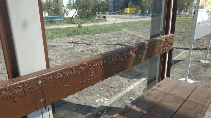 «Жара ответственности не снимает»: в Кургане расплавилась краска на лавочках на новых остановках