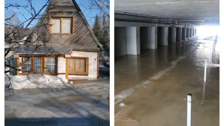 «Скоро начнут оттаивать туалеты»: река подтопила коллективные сады вдоль Ново-Московского тракта