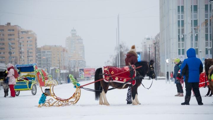 Техника воюет со снегом, дети атакуют горки: смотрим, чем живет Архангельск в первые дни года