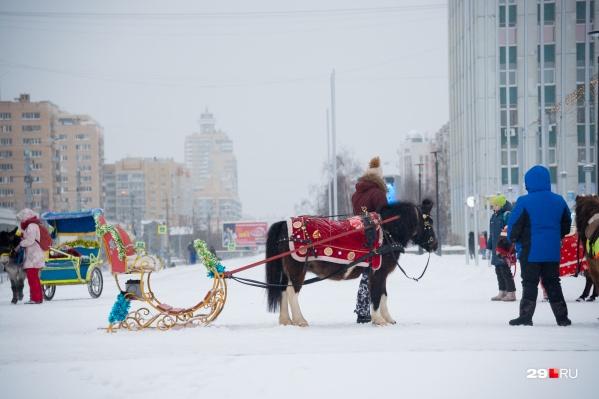 Катание на санях, запряженных лошадкой, — одно из развлечений в центре Архангельска