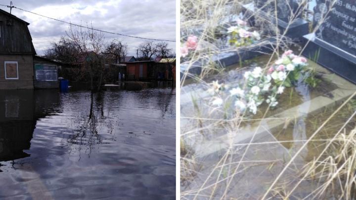 Ярославцы показали затопленные дачи и могилы: фотоподборка