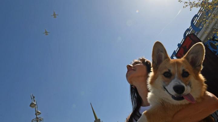 В Екатеринбурге прошла первая репетиция авиапарада: 10 ярких фото