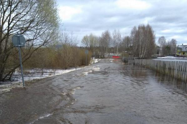 Теперь людям придется объезжать затопленную дорогу