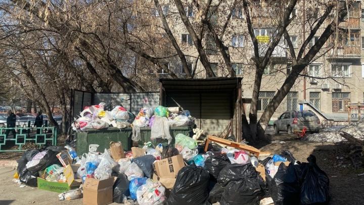 Дворы завалило мусором, а уборщики ломают контейнеры: неприятные фото из центра Новосибирска