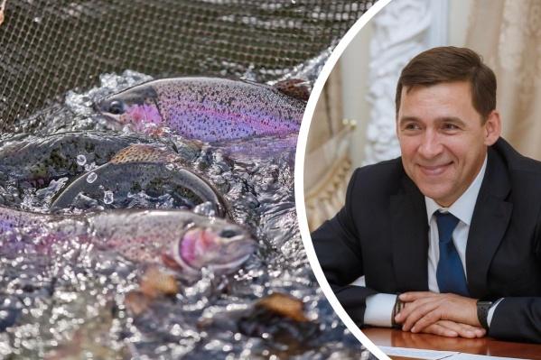 Евгений Куйвашев поручил местным властям подключиться к этой истории