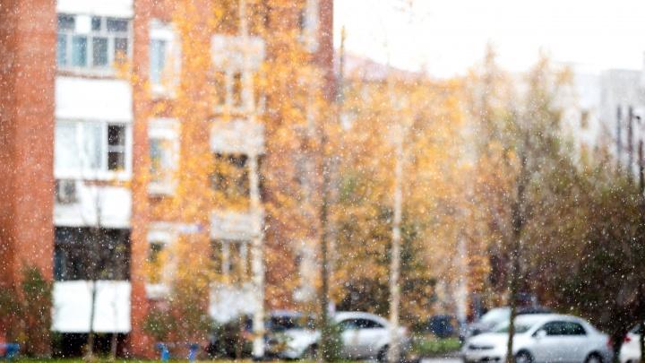 «Температура станет стремительно понижаться»: метеорологи предупредили о выпадении первого снега