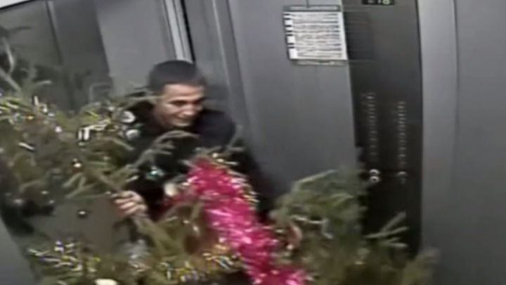 В Академическом укравшие елку воры засветились на камерах. Охрана смонтировала смешной блокбастер