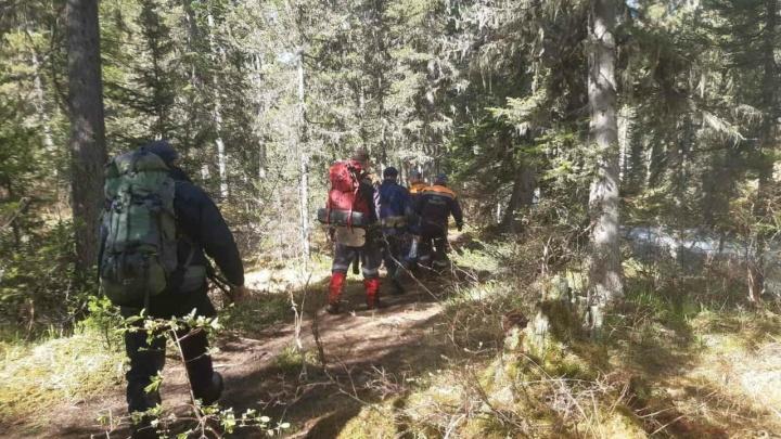 На поиски погибшего от лап медведя туриста в «Ергаках» отправили вертолет