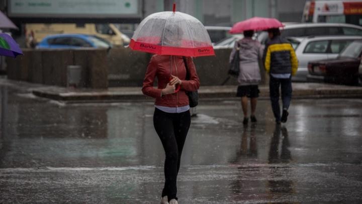 Вместе с пасмурной и дождливой погодой новосибирцев ждет ветер скоростью до 16 м/с