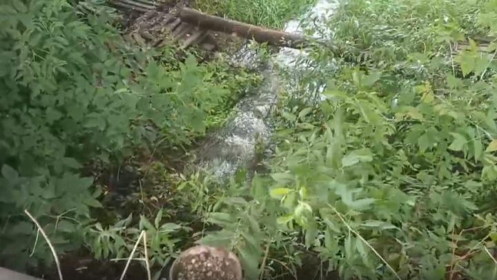 «Экологическая катастрофа»: в реку, впадающую в Плещеево озеро, стекают фекалии