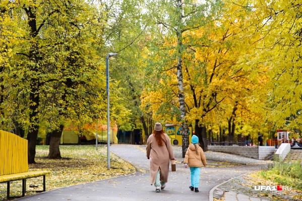Уфимцы наслаждаются осенним теплом, природа готовится к зимнему сну и дарит многоцветье