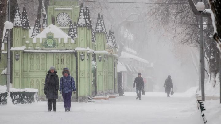 Синоптики рассказали о погоде в Прикамье на ближайшие выходные