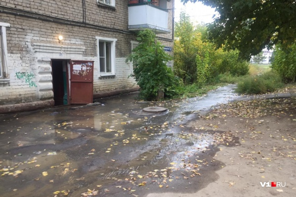 Вода топит не только пешеходные дорожки, но и дома