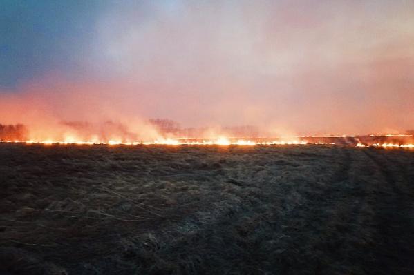 Местные жители переживают за сохранность флоры и фауны Песьяновского заповедника, который частично может уничтожить сильный природный пожар
