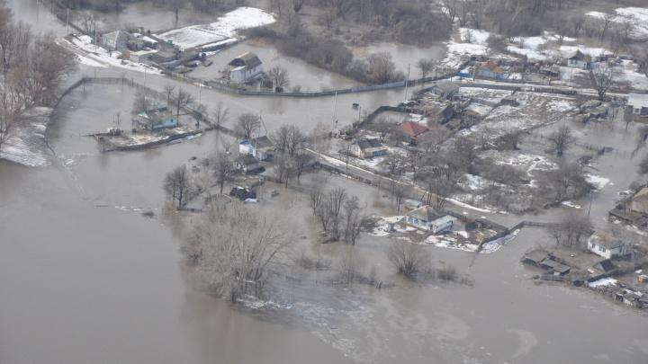 «Вашими бы молитвами повыше бы еще вода поднялась»: в Волгоградской области начался паводок