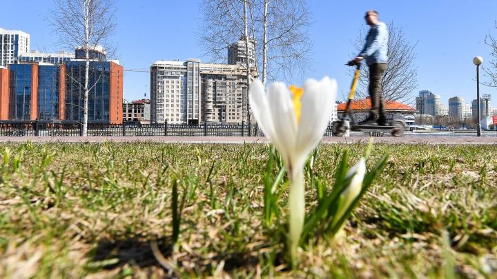 Весна сбавила темп. Синоптики рассказали, когда в Екатеринбурге снова потеплеет