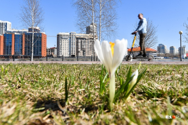 Весна набрала хороший темп, но сбавила его из-за антициклона
