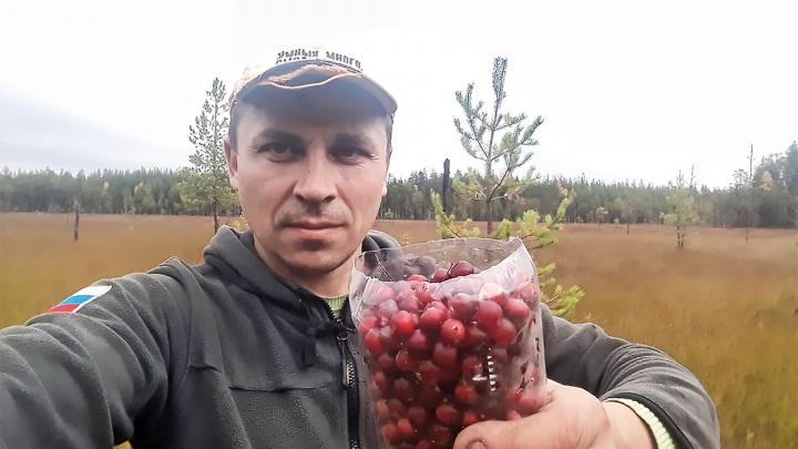 Бизнес на грибах и ягодах. Как предприниматель из Соликамска стал отправлять заморозку из наших лесов в рестораны Италии