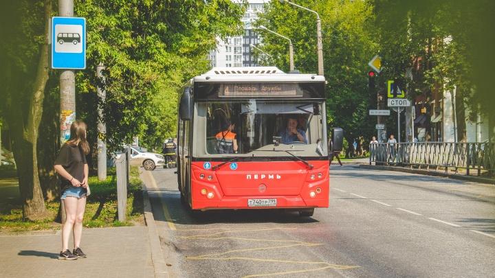 «Дальнейшее сокращение нецелесообразно». Администрация представила план развития общественного транспорта Перми