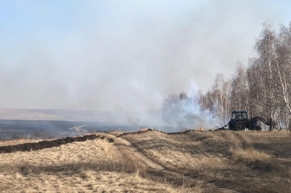 В Курганской области произошли уже несколько крупных лесных пожаров