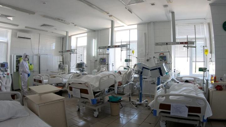 17 умерших, 349 заболевших: в Волгограде признают всё больше смертей от коронавируса
