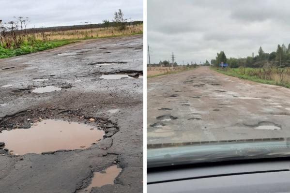 Вот так выглядит дорога Бурмакино — Рождествено в Ярославской области