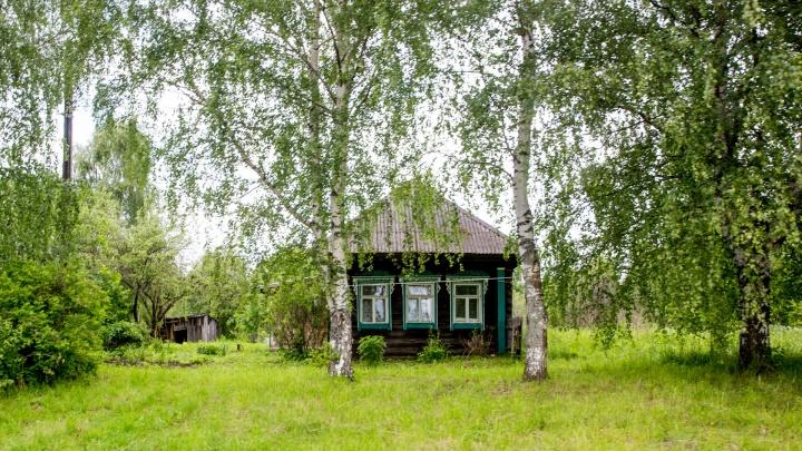 «Потом неожиданно бац — и кладбище!»: ярославцы резко высказались против жизни в частном доме