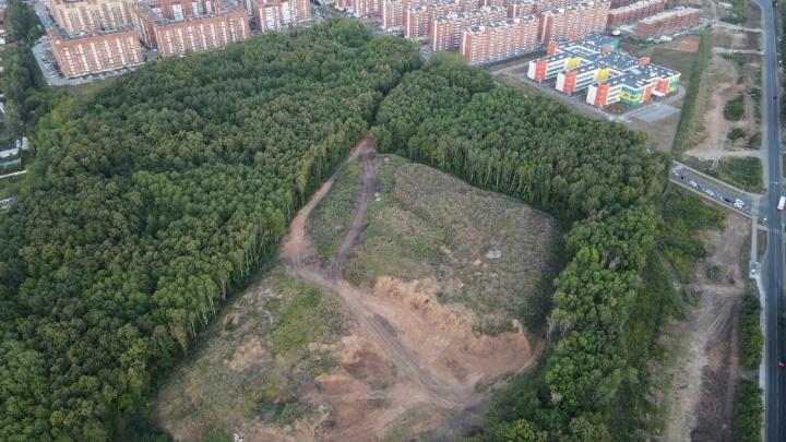 Жители Самары попросили Ольгу Бузову спасти лес в Новой Самаре