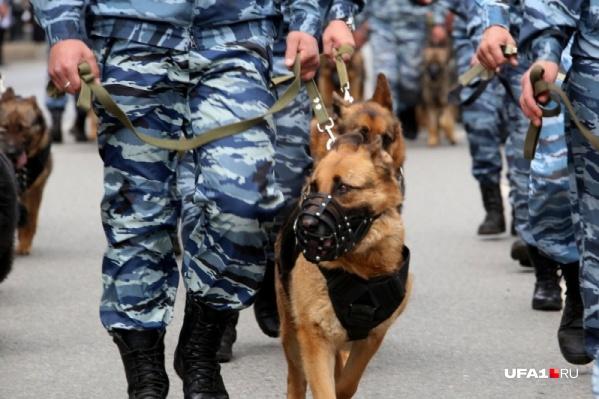 Сотрудники ФСБ действовали совместно с МВД и Следкомом