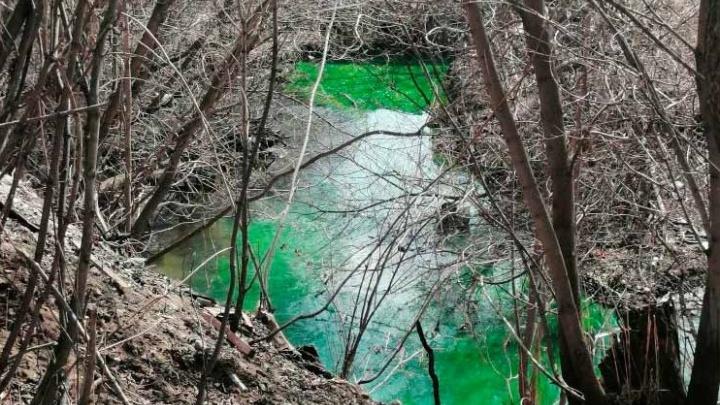 Пермская речка Данилиха окрасилась в зелёный цвет. Спрашиваем у эколога, нормально ли это