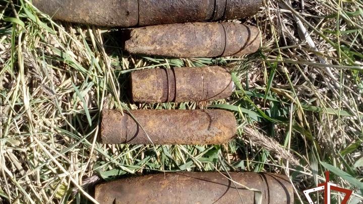 На берегу озера в Курганской области нашли 14 артиллерийских снарядов