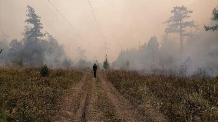 В Башкирии ликвидированы все лесные пожары. Оцениваем последствия