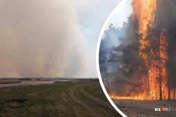 В регионе действует особый противопожарный режим