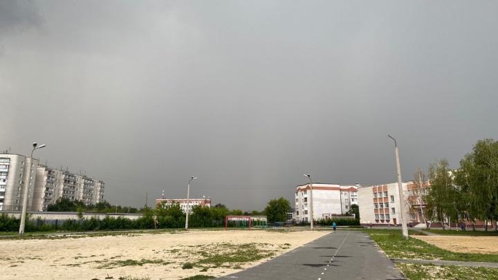 Жаркую погоду в Зауралье разбавят ливни и грозы. В конце недели похолодает