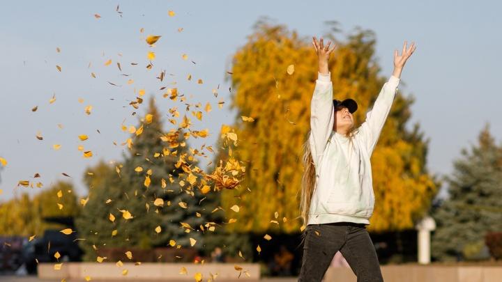 В золоте, багрянце и с любимыми: смотрим, как волгоградцы проводят последние теплые дни осени